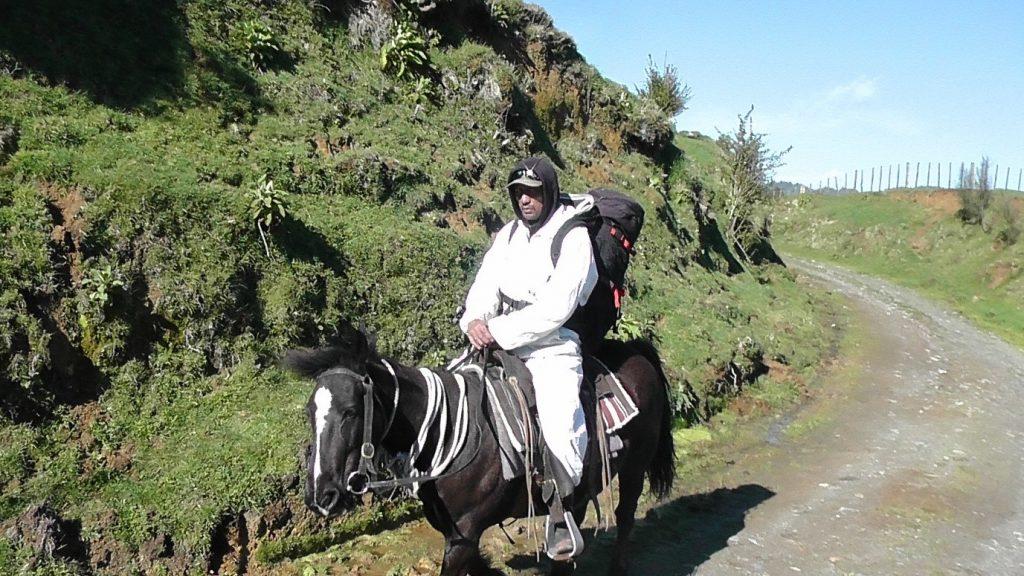 Manawa Honey NZ Beekeeper Riding Horse To Check Hives Downriver In Ruatahuna, Te Urewera