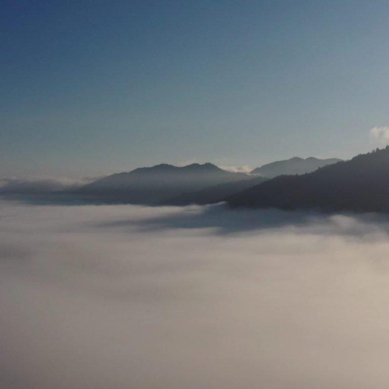 Mist over Ruatahuna valley in Te Urewera forest where Manawa Honey NZ is based