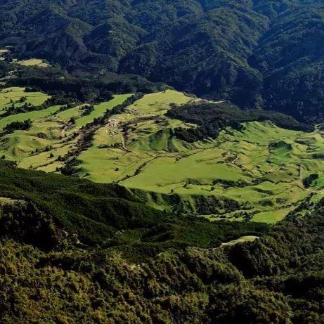 Ruatahuna Valley where Manawa Honey NZ produces Manuka and Forest Tree Honeys of Te Urewera