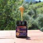 Rewarewa Honey By Manawa Honey NZ Ruatahuna Dripping off Honey Dipper