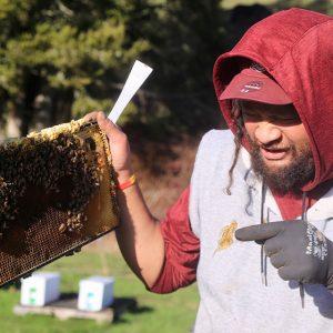 beekeeper toby staff member manawa honey nz